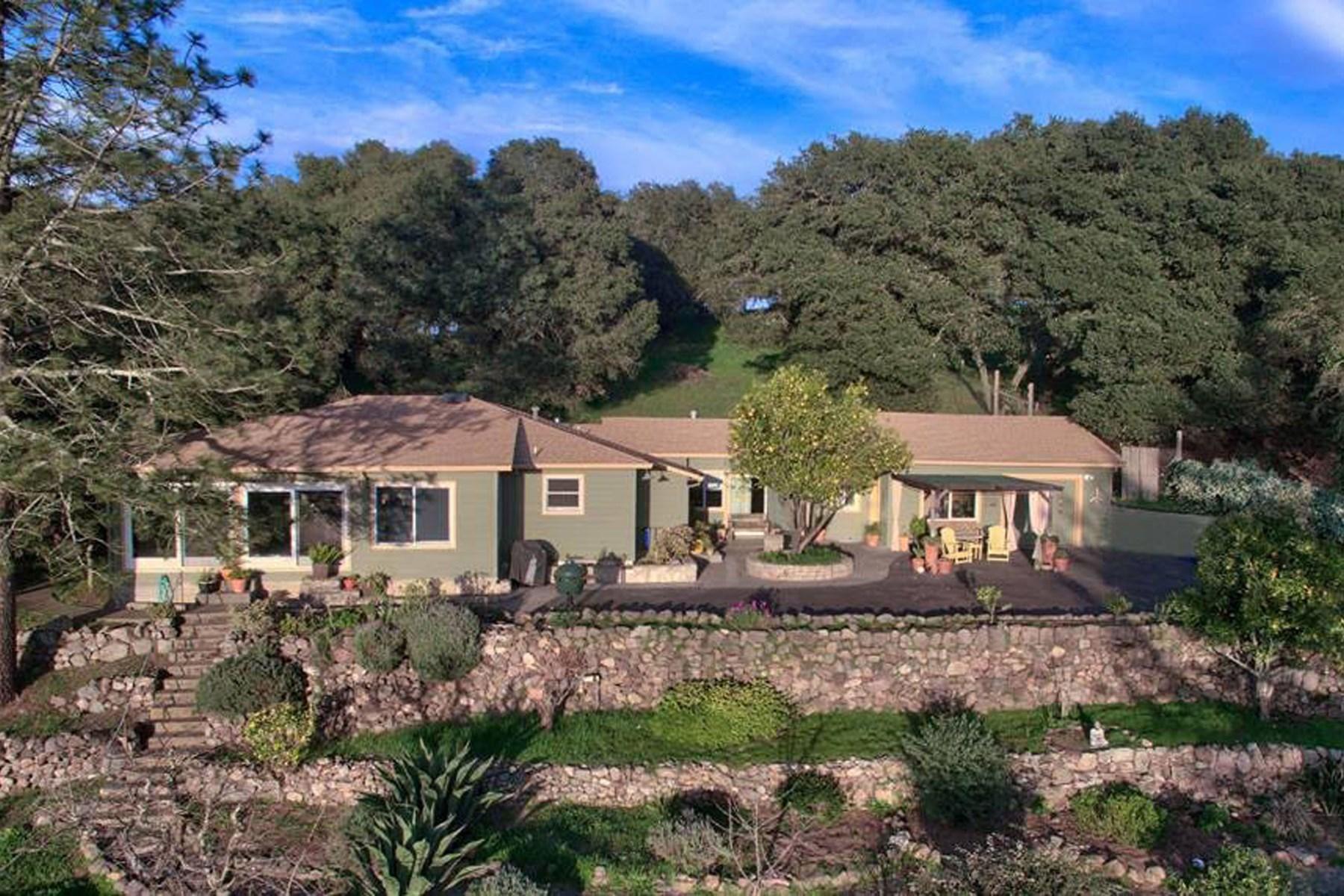 土地 为 销售 在 Eastside Sonoma Farmhouse 5284 Lovall Valley Loop Rd 索诺玛, 加利福尼亚州, 95476 美国