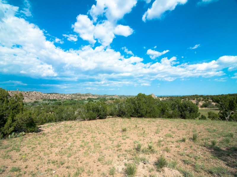 Land for Sale at County Road 55A County Road 55 A Santa Fe, New Mexico 87510 United States