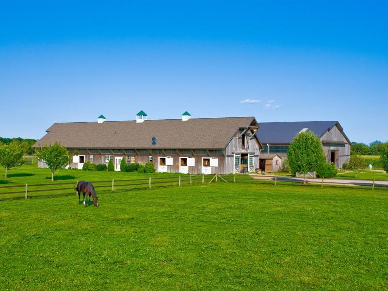 Terrain pour l Vente à Approx. 14-Acre Horse Farm, Custom Barns Water Mill, New York 11976 États-Unis