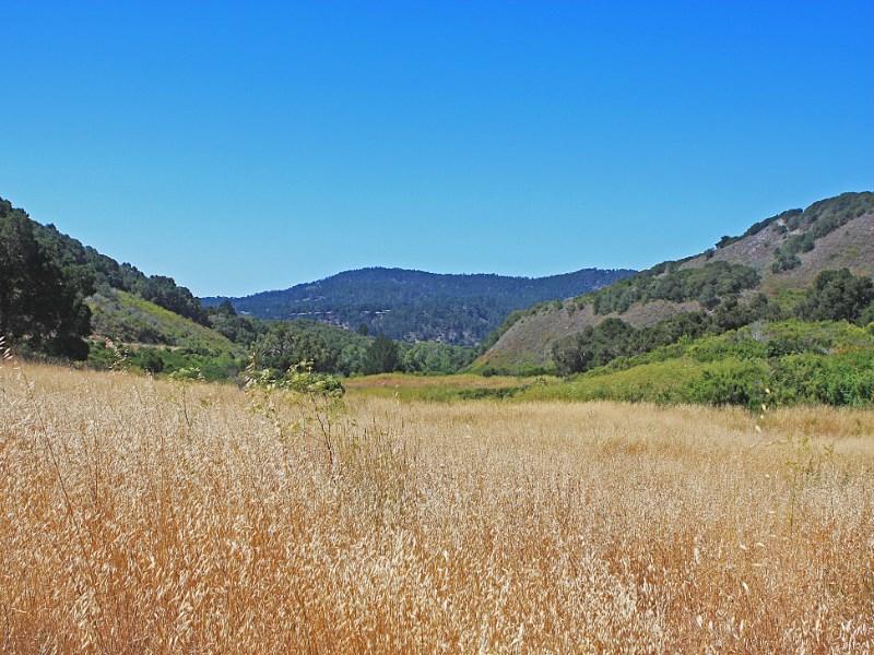 Land for Sale at 4 Wild Boar Run Carmel, California 93923 United States