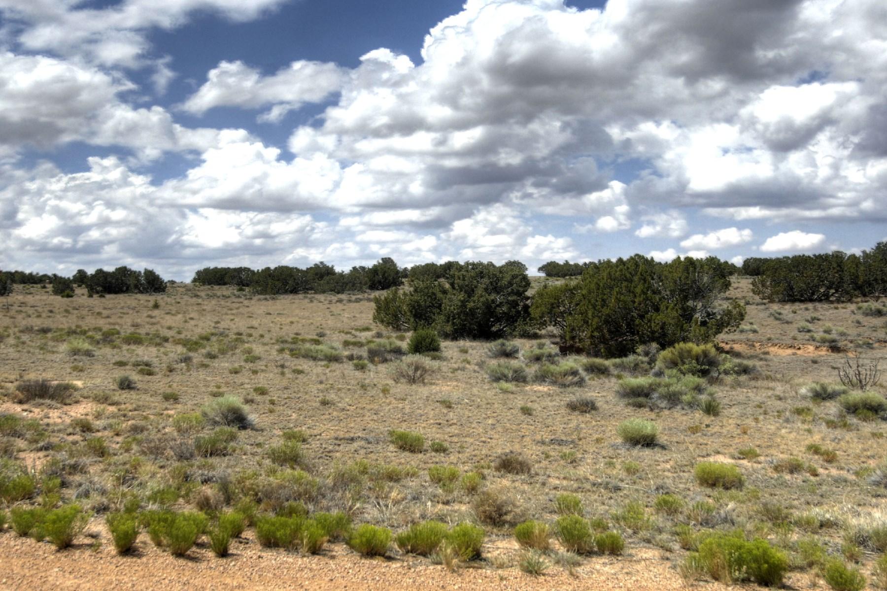 Land for Sale at 133 Paseo Aragon, Lot #58 Las Campanas & Los Santeros, Santa Fe, New Mexico 87506 United States