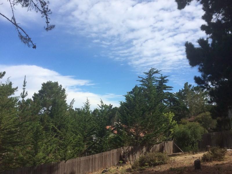 Terrain pour l Vente à BUILD YOUR DREAM HOME 0 Forest Way Pebble Beach, Californie 93953 États-Unis