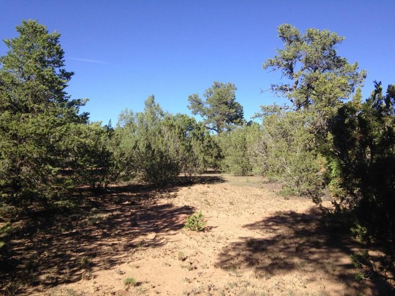 Land for Sale at Apache Ridge & Mescalero Trail Apache Ridge Tracts 2a2b Santa Fe, New Mexico 87508 United States
