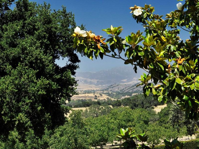 Property Of The Hacienda at Rancho Encantado