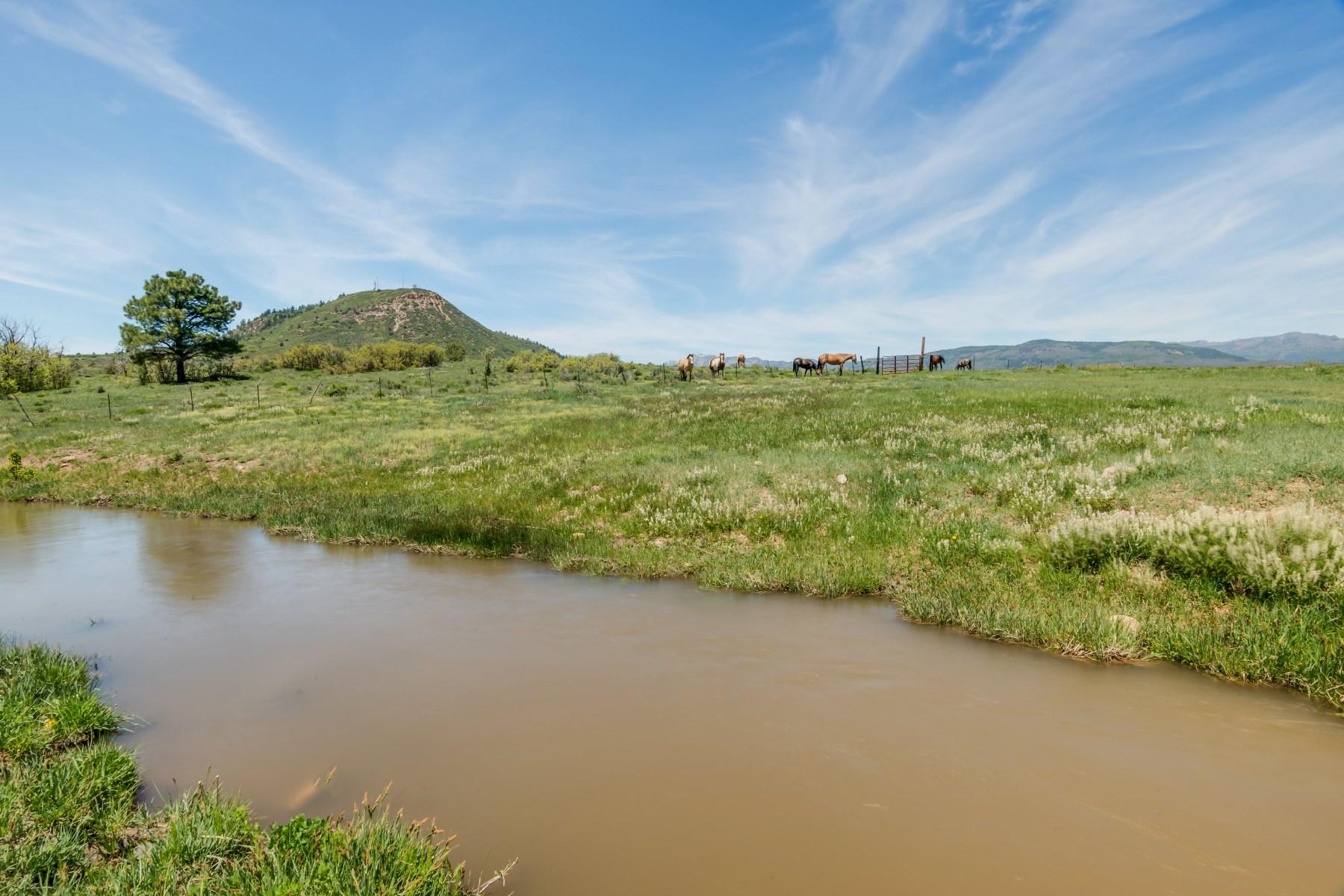 Nông trại / Trang trại / Vườn vì Bán tại 2199 Torrez Ranch 2199 Torrez Ranch F&R Chama, New Mexico 87520 Hoa Kỳ