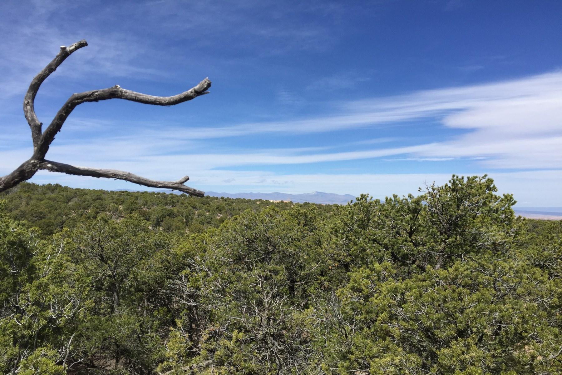 Land for Sale at 324 Pawprint - Lot 135 324 Pawprint Trail Monte Sereno, Santa Fe, New Mexico 87506 United States