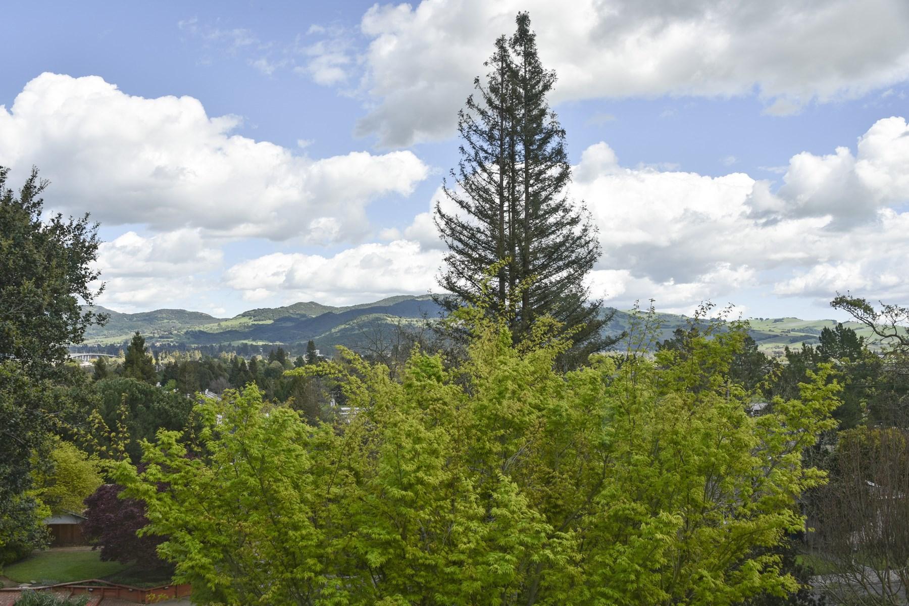 Casa Unifamiliar por un Venta en Napa Valley View Property 2732 Jacqueline Ct Napa, California, 94558 Estados Unidos