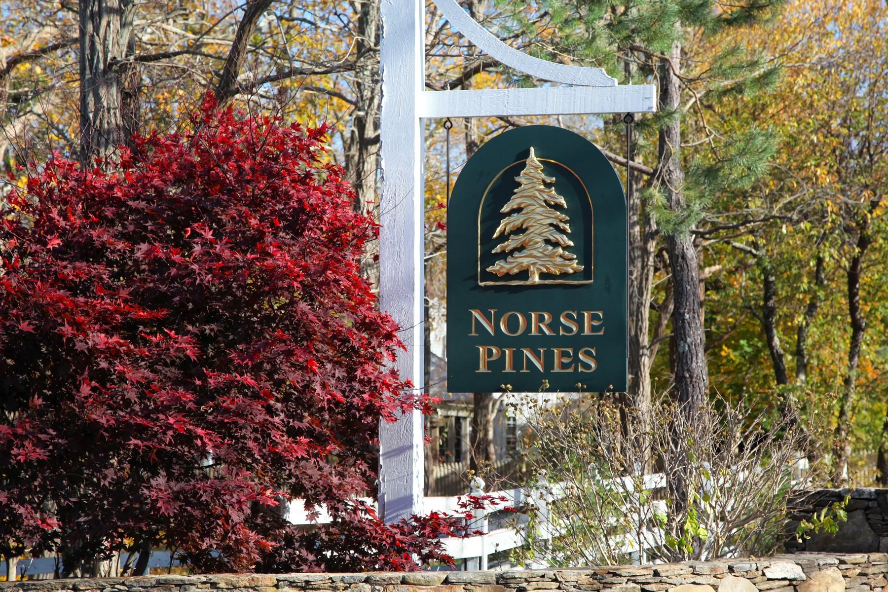 Terreno para Venda às Buildable Lot on North Side of 6A 11 Norse Pines Drive East Sandwich, Massachusetts, 02537 Estados Unidos