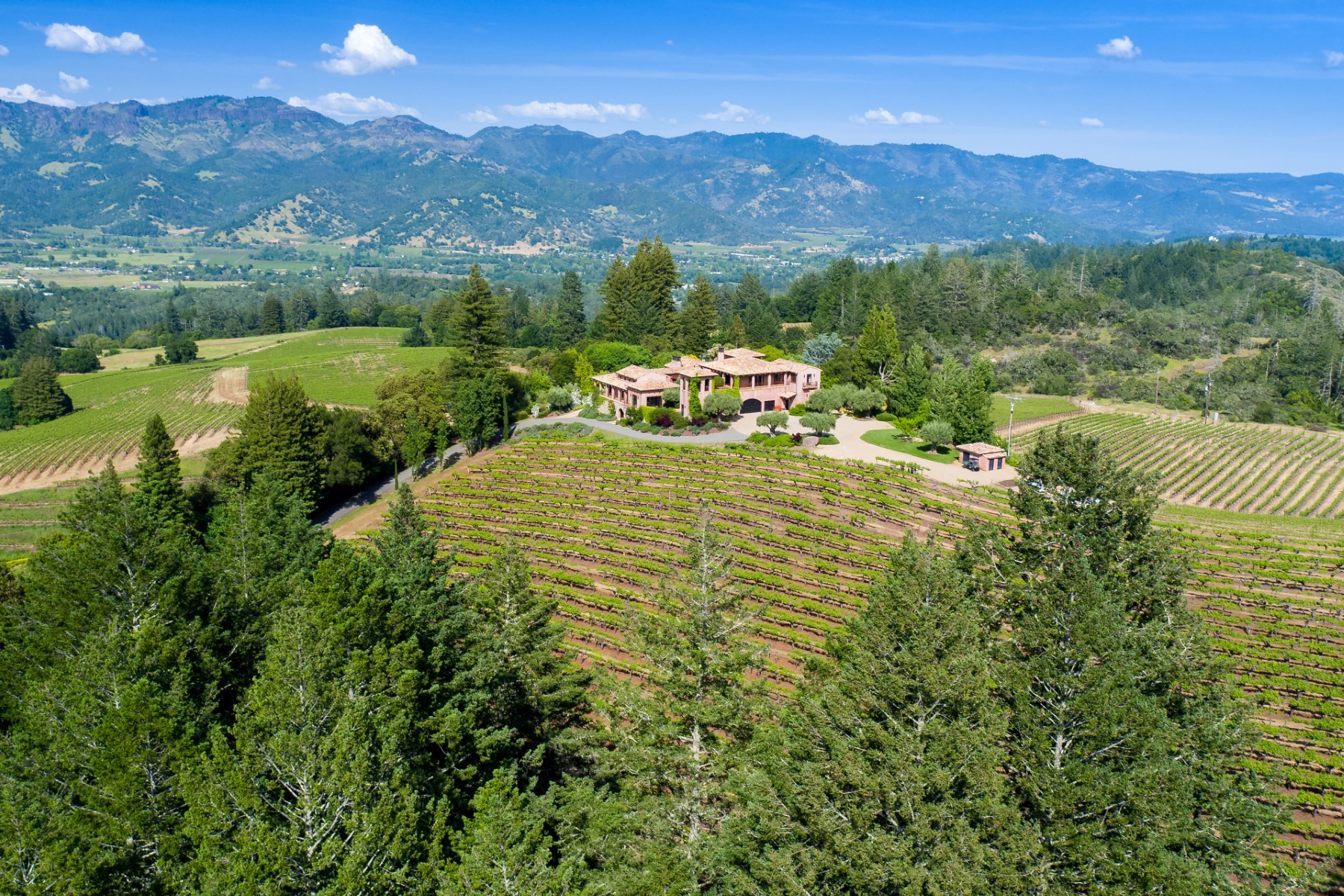 sales property at Prized Hilltop Villa and Vineyard