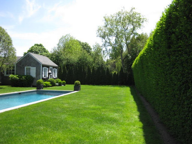 Property Of Southampton Charm With Separate Cottage