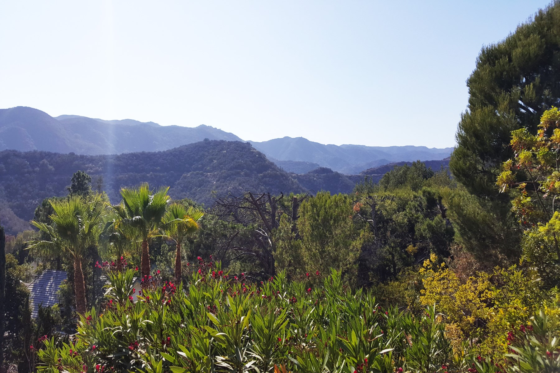 rentals property at Serene Mediterranean Oasis