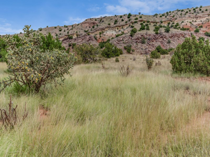 Land for Sale at Lot 2-B Puertocito Sandia Park, New Mexico, 87047 United States