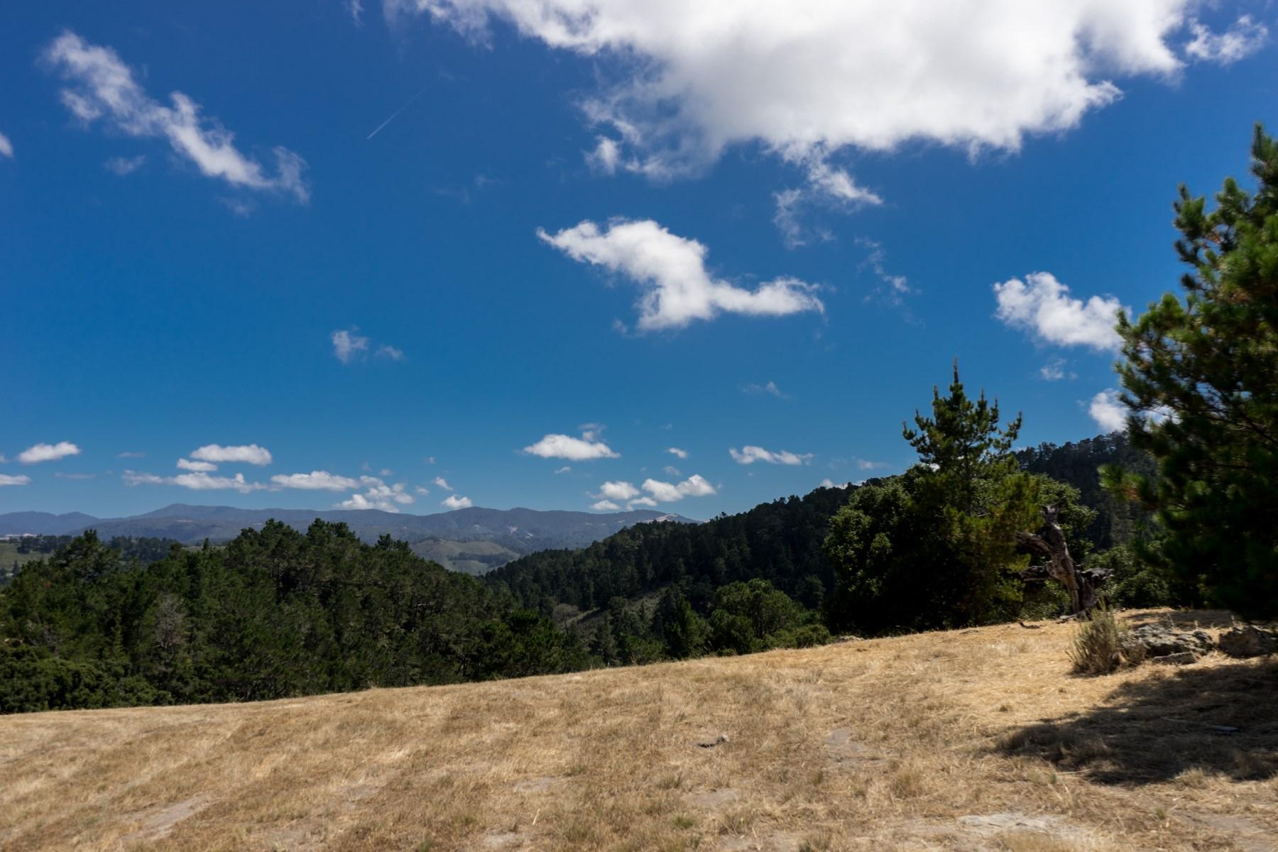 Terrain pour l Vente à Tehama Homesite 97 7925 Cinquenta Carmel, Californie, 93923 États-Unis
