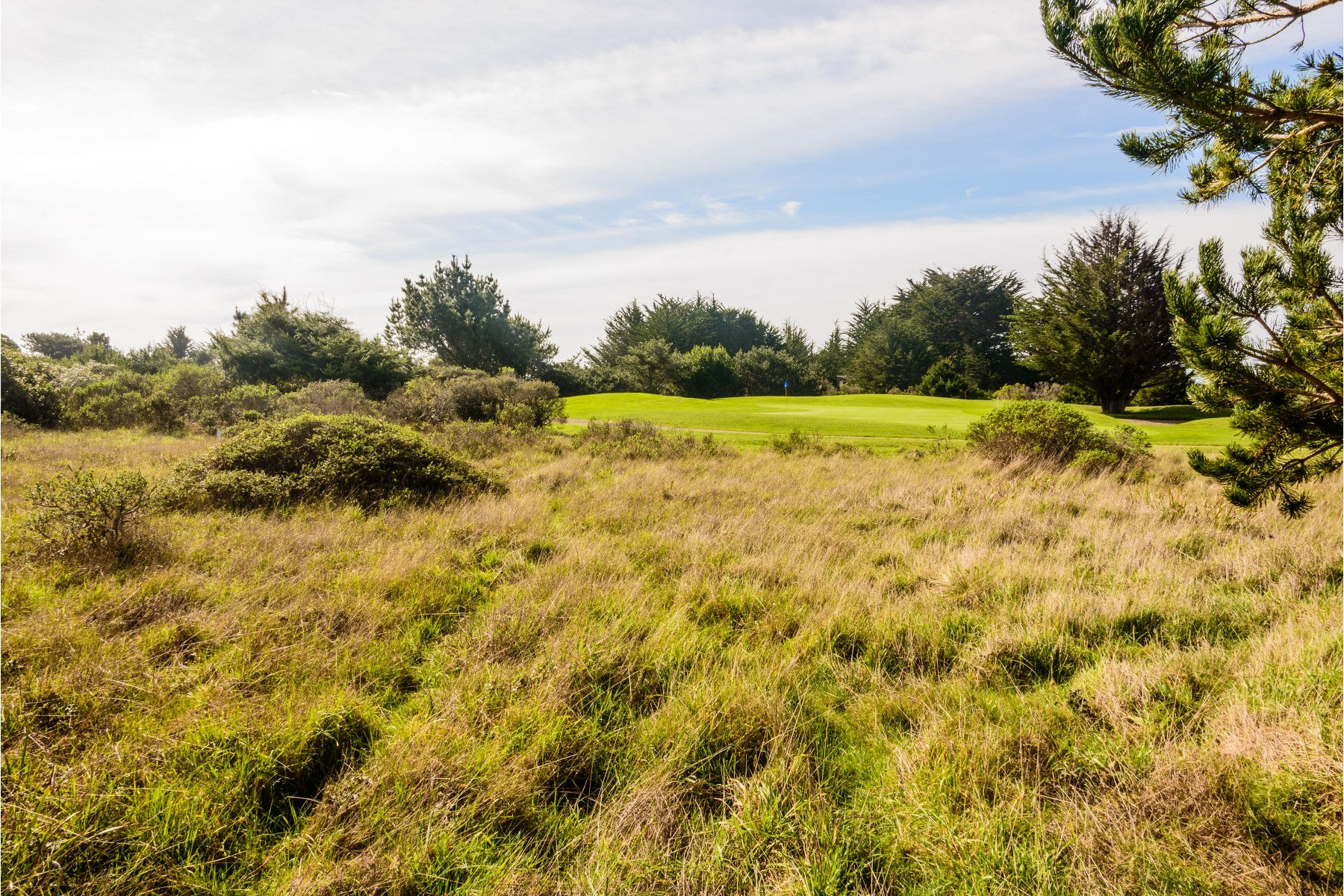 Land for Sale at Golf Course Building Site 41515 Fawn The Sea Ranch, California 95497 United States