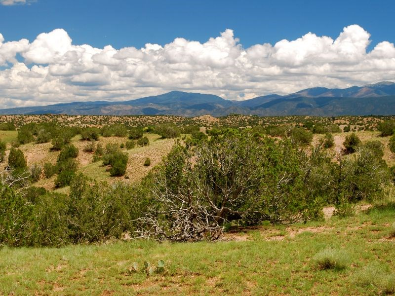 Land for Sale at Lot 46 Chisholm Trail Santa Fe, New Mexico 87506 United States