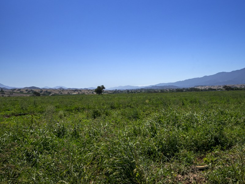 Land for Sale at Agricultural View Estate Roblar Avenue Santa Ynez, California 93460 United States