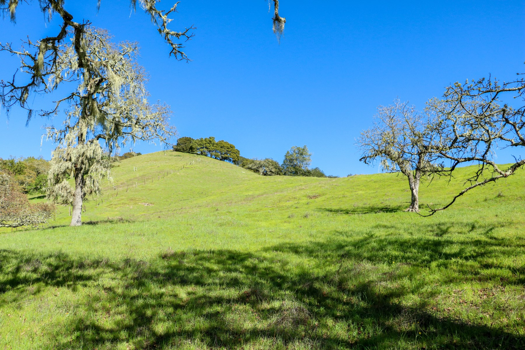 Land for Sale at Beauty, Location, Views 5381 Bennett Valley Rd Santa Rosa, California, 95404 United States