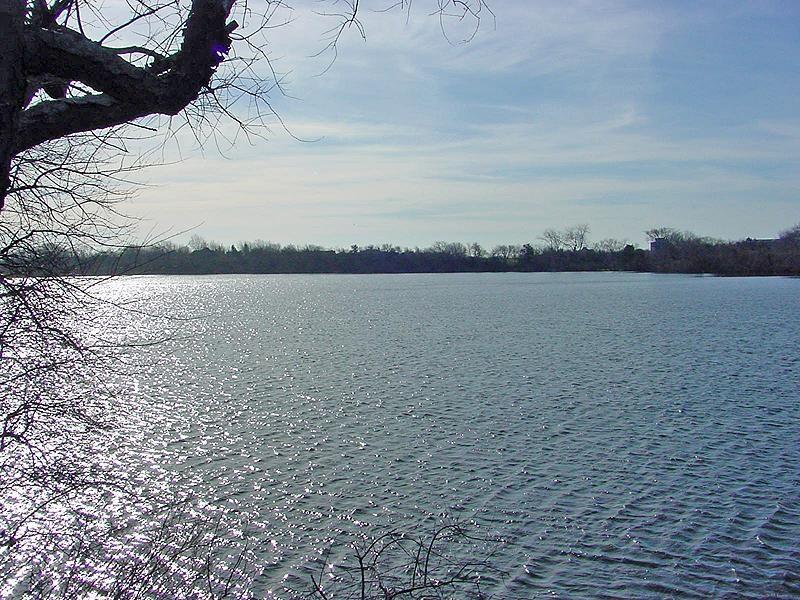 Property Of Spectatular Sunsets on Kellis Pond