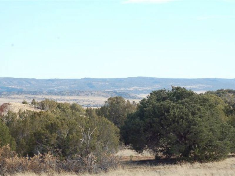 Land for Sale at 35 Silver Saddle Santa Fe, New Mexico 87540 United States