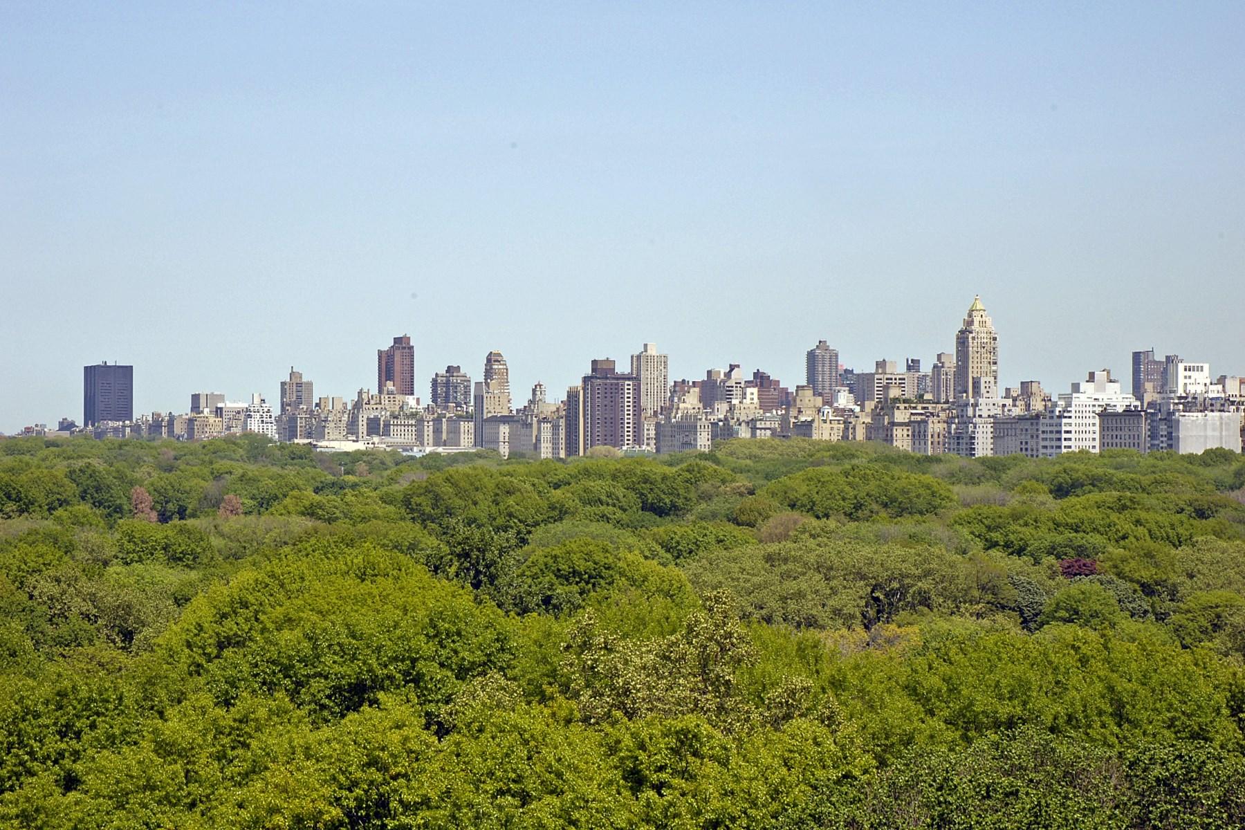 共有 為 出售 在 230 Central Park South, Fl 12 230 Central Park South Fl 12 Upper West Side, New York, 紐約州, 10019 美國
