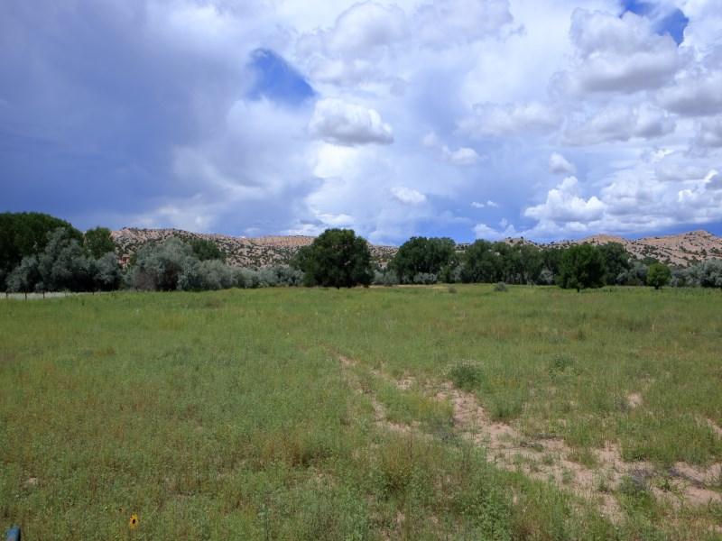 土地 为 销售 在 34973 Hwy 285 卡林特, 新墨西哥州, 87549 美国