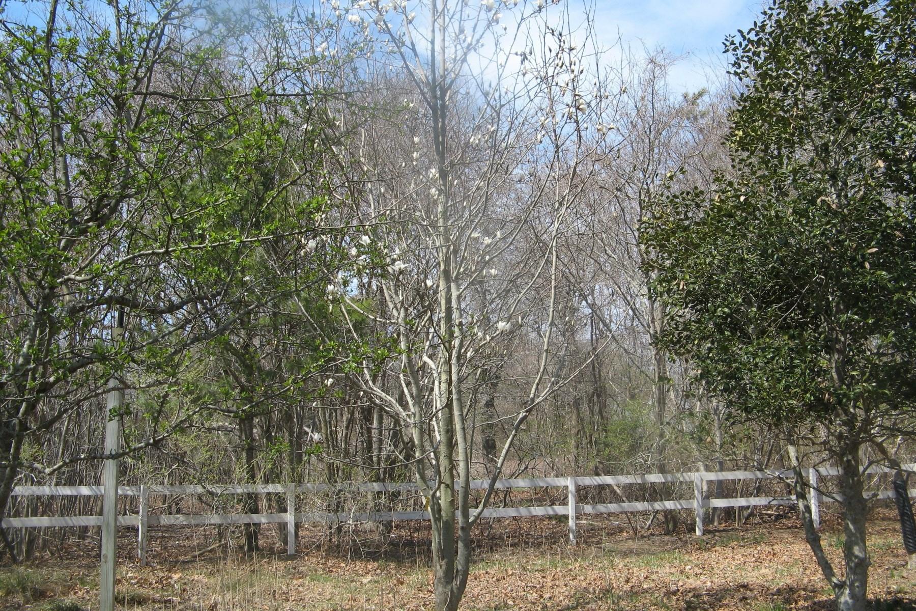 토지 용 매매 에 Land South of the Highway East Hampton, 뉴욕, 11937 미국