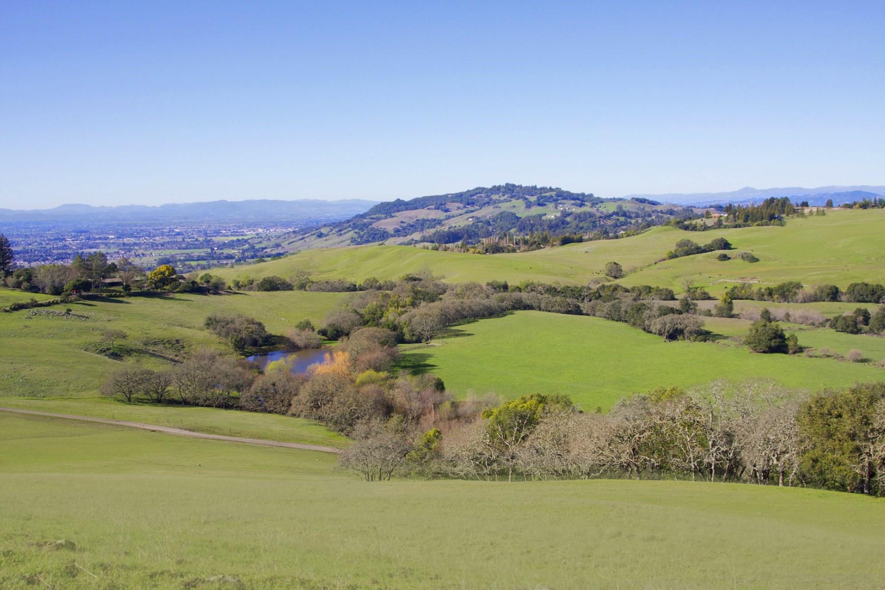 ブドウ園 のために 売買 アット Sonoma Mountain Springs Ranch 5307 Lichau Rd Penngrove, カリフォルニア, 94951 アメリカ合衆国