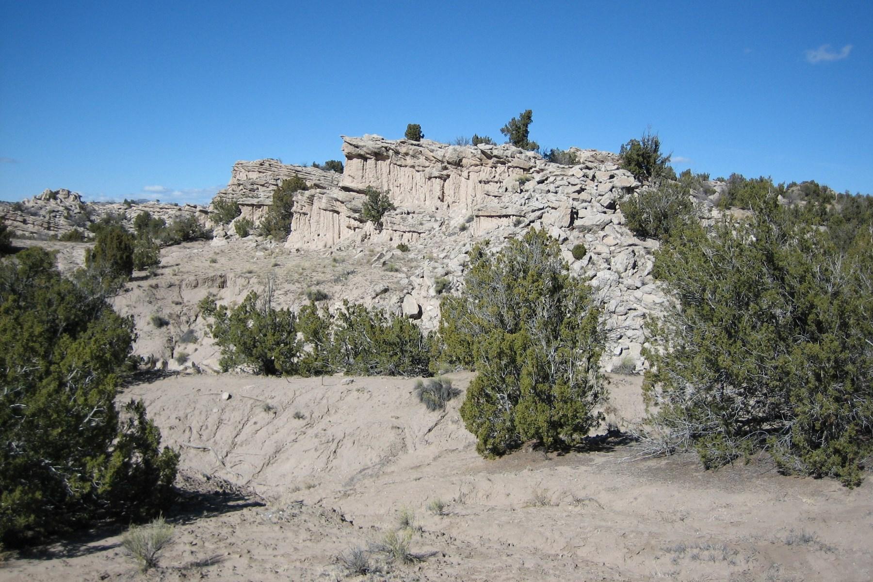 土地 为 销售 在 Lot 5, Rancho de San Juan 卡林特, 新墨西哥州, 87549 美国