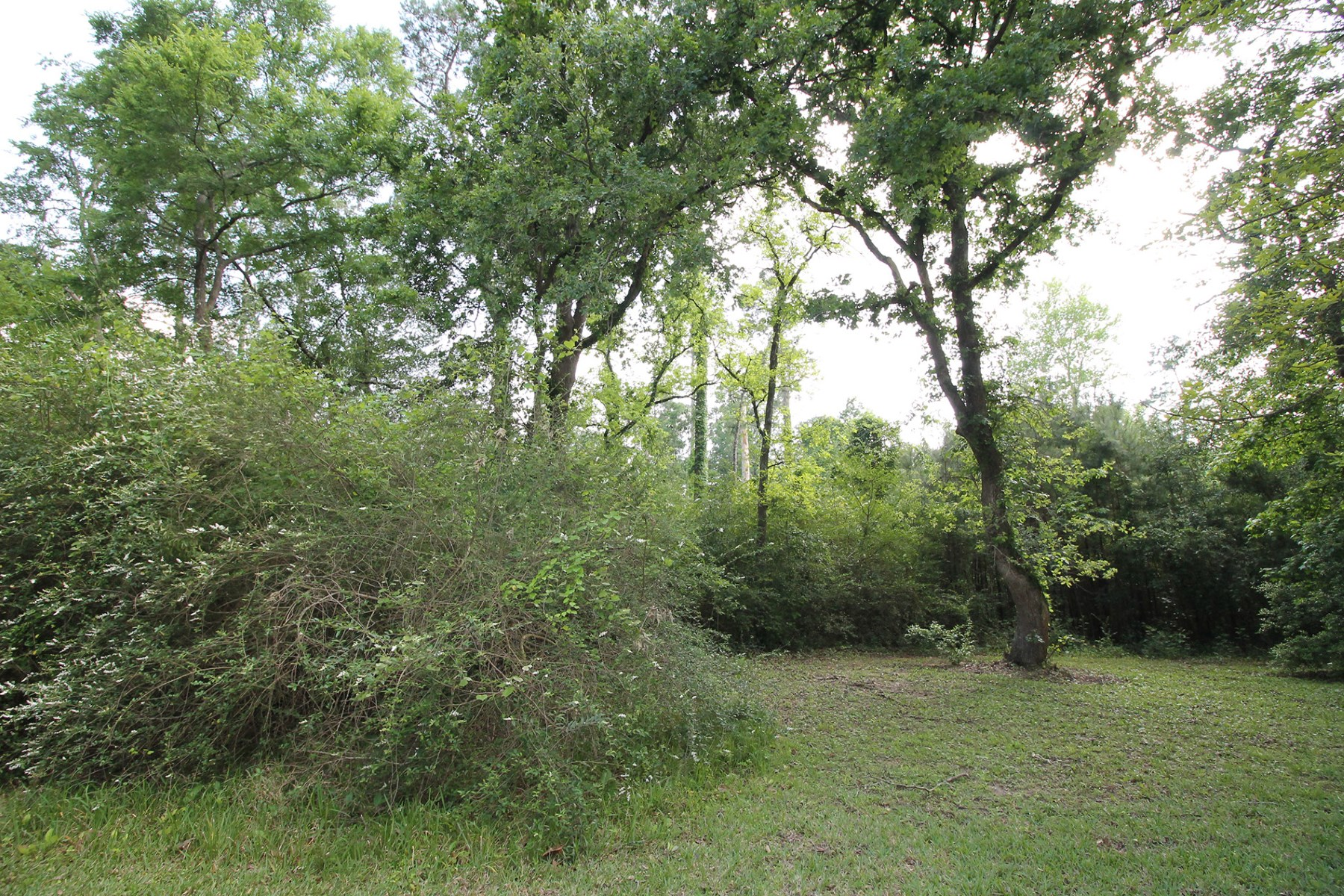Land for Sale at 0 Timbercrest Drive Tomball, Texas 77375 United States