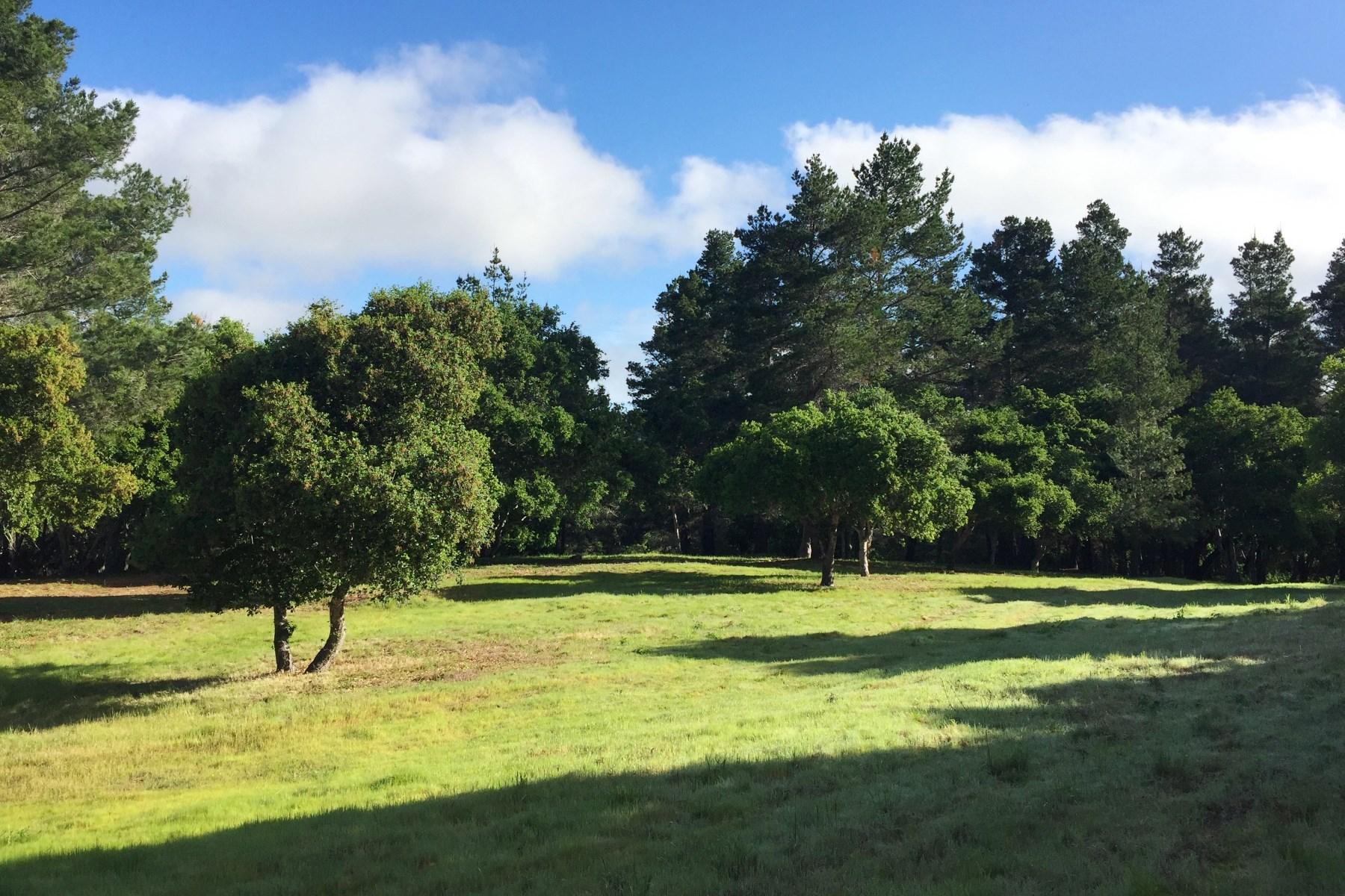 토지 용 매매 에 Tehama Custom Homesite with Views 83 Whispering Pines Carmel, 캘리포니아, 93923 미국