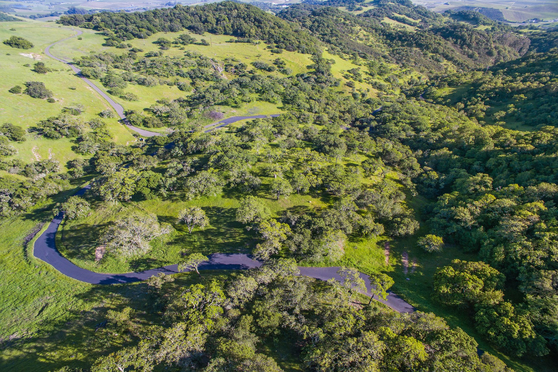 Additional photo for property listing at Over 10 Acres of Exceptional Level Land 19292 Arrowhead Mountain Rd. Sonoma, California 95476 United States
