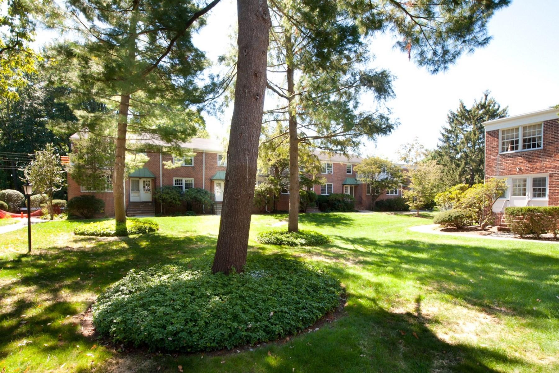 合作公寓 为 销售 在 Putnam Park 194 Putnam Park Central Greenwich, Greenwich, 康涅狄格州 06830 美国