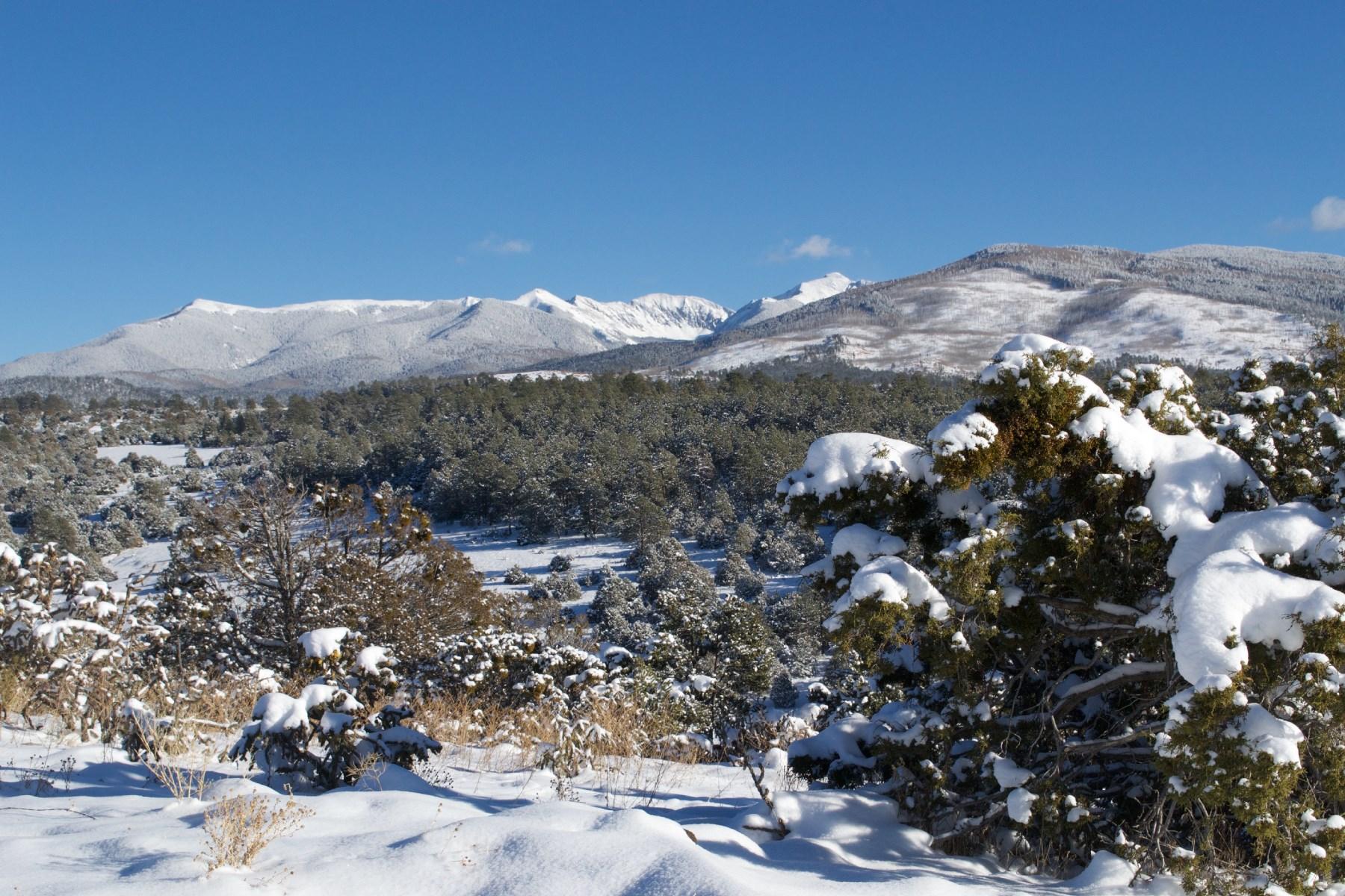 Đất đai vì Bán tại County Road 79 Truchas, New Mexico, 87578 Hoa Kỳ