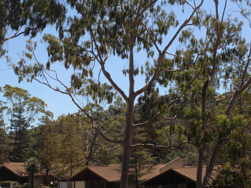 Eigentumswohnung für Verkauf beim Updated in the Highlands 1035 Miramonte Drive #5 Santa Barbara, Kalifornien 93109 Vereinigte Staaten