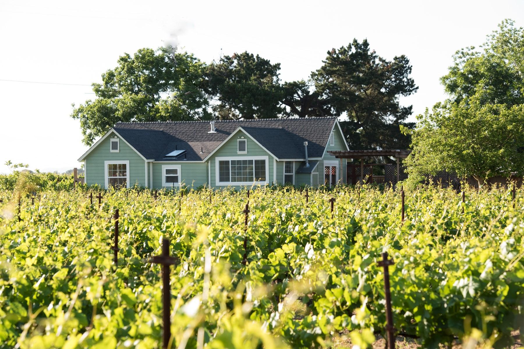 Vineyard for Sale at 23344 Burndale Road, Sonoma 23344 Burndale Rd Sonoma, California, 95476 United States