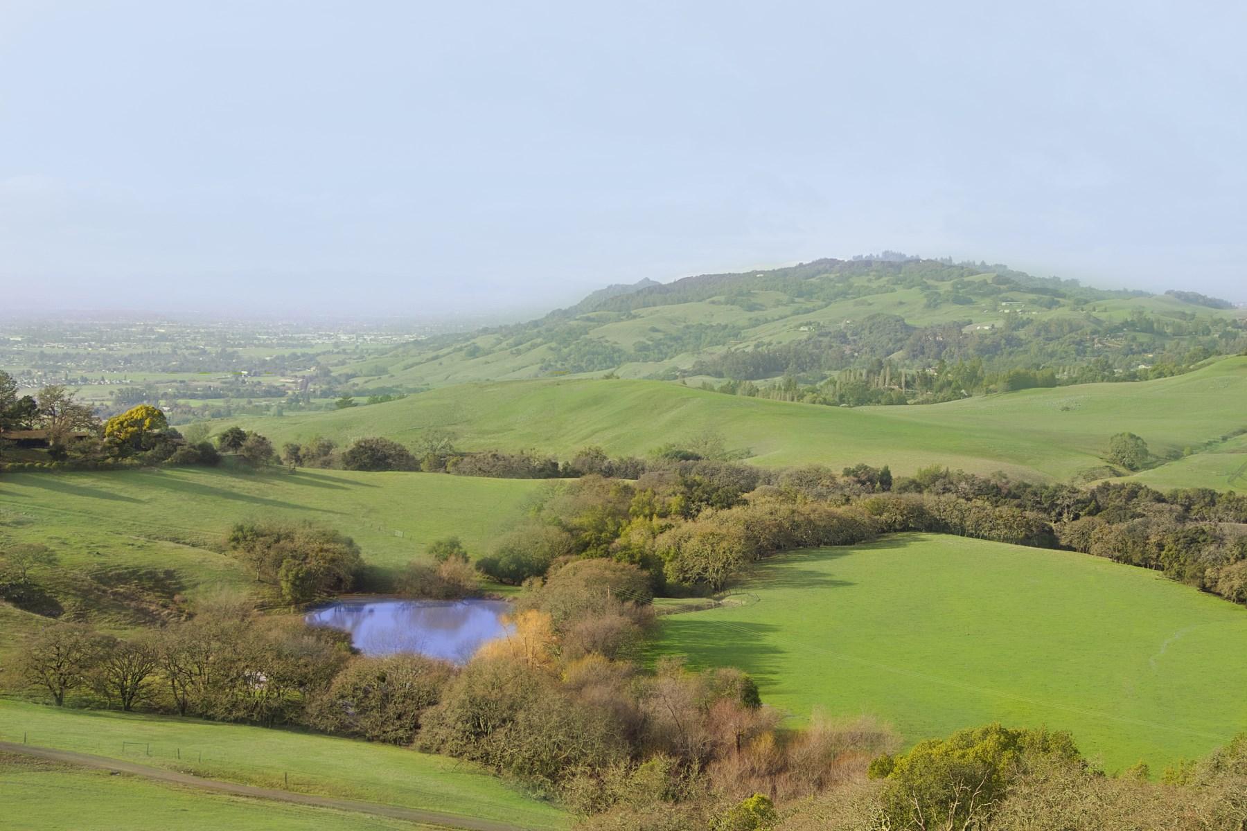 Vinhedo para Venda às Sonoma Mountain Springs Ranch 5307 Lichau Rd Penngrove, Califórnia, 94951 Estados Unidos