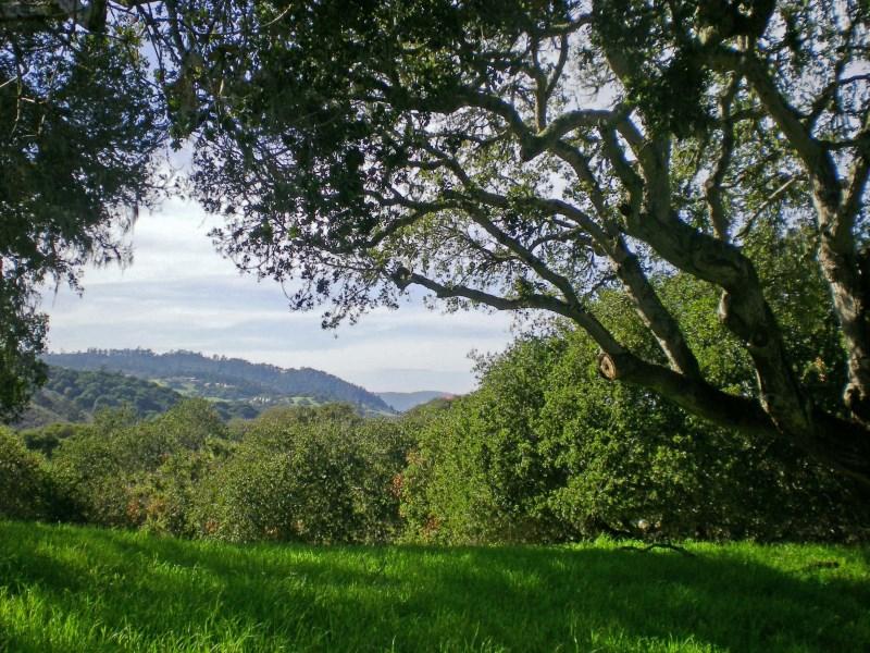 Đất đai vì Bán tại Monterra Homesite 151 8345 Monterra Views (Lot 151) Monterey, California, 93940 Hoa Kỳ