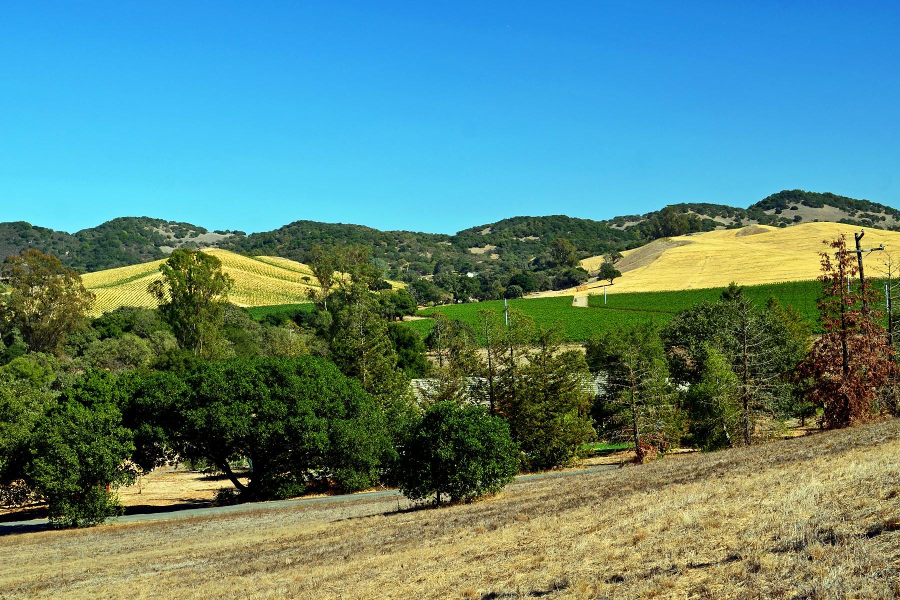 토지 용 매매 에 21700 Burndale Road 21700 Burndale Rd Sonoma, 캘리포니아, 95476 미국