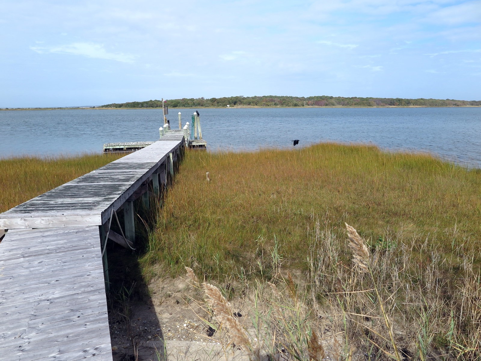 Single Family Home for Rent at 140 +/- Feet of Waterfront Enjoyment Southampton, New York 11968 United States