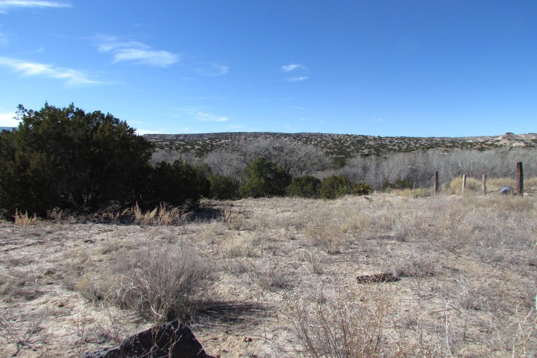 土地 为 销售 在 Lot 4 Tract B-3 S Chili Road Lot 4 Tract B-3 S. Chili Road 卡林特, 新墨西哥州, 87549 美国