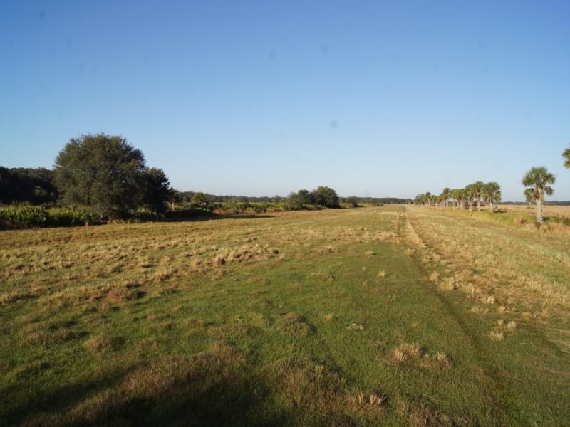 Farm / Ranch / Plantation for Sale at 4H Ranch at Lake Marian Yeehaw Junction, Florida 34739 United States