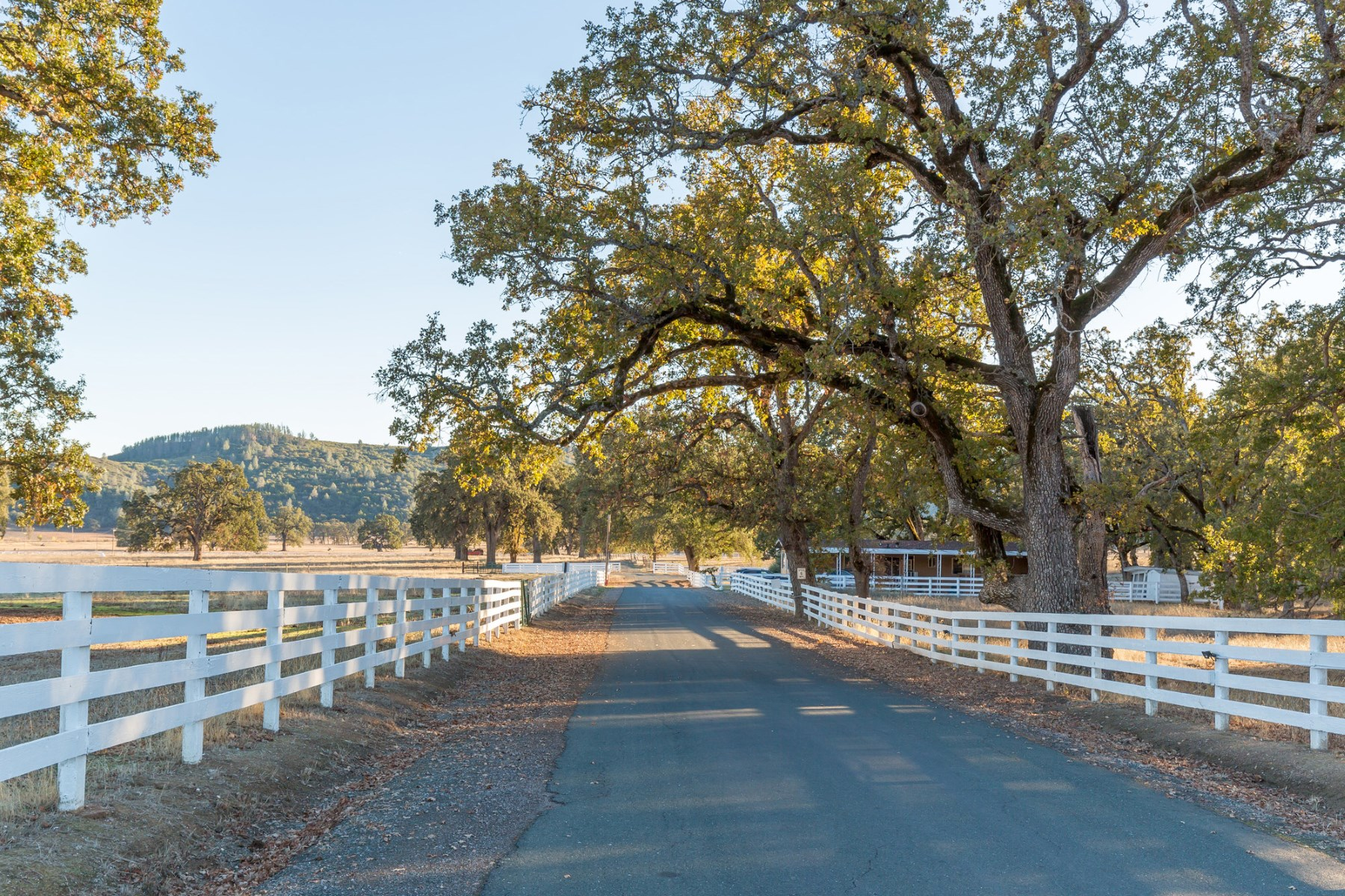 Farm / Ranch / Plantation for Sale at High Valley Luxury Ranch Clearlake Oaks, California, 95423 United States