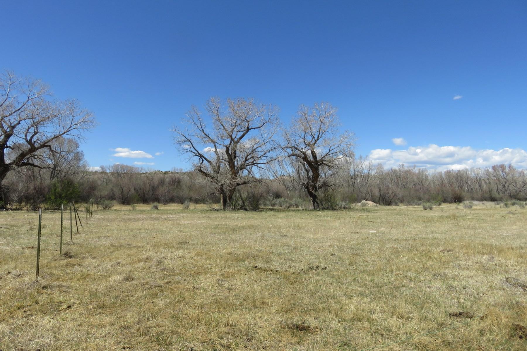 土地 为 销售 在 Tract B-4 State Hwy 285 Tract B-4 State Highway 285 卡林特, 新墨西哥州, 87549 美国