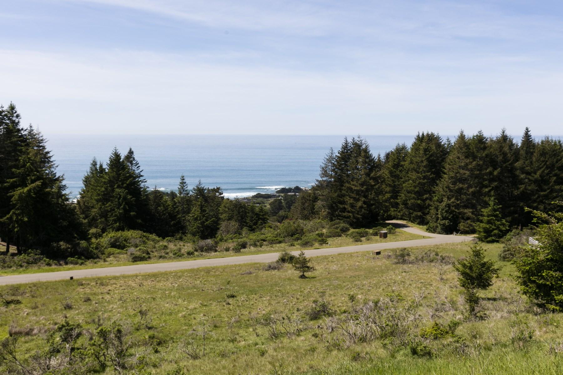 Terreno per Vendita alle ore Spectacular Hillside Building Lot 36964 Greencroft Close The Sea Ranch, California, 95497 Stati Uniti