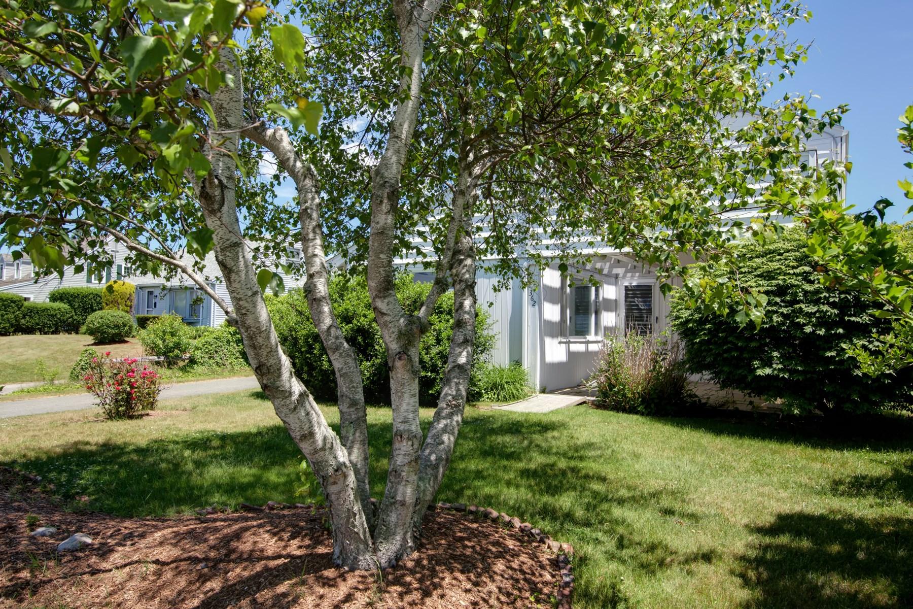 Villa per Vendita alle ore Stroll to Beach 362 Walker Street Falmouth, Massachusetts, 02540 Stati Uniti