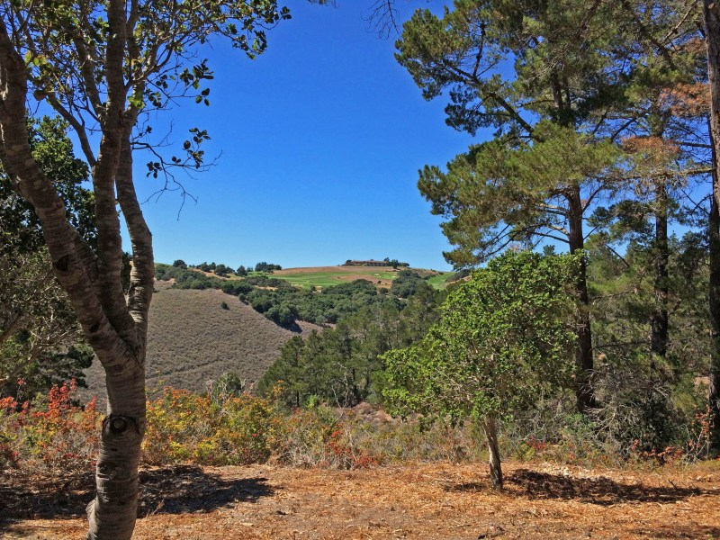 Property For Sale at Tehama Custom Homesite with Views