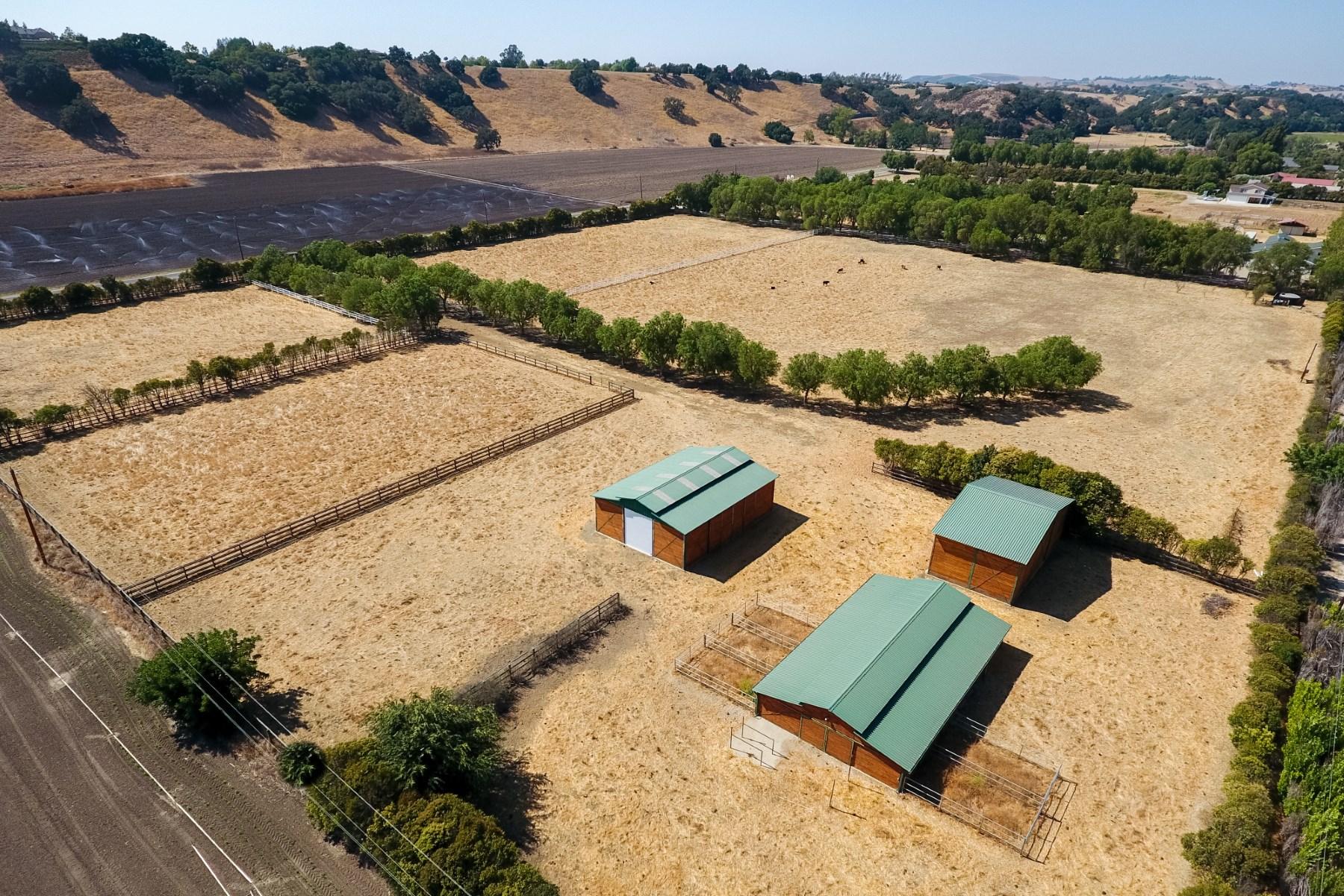 Terreno por un Venta en Estate Parcel In Ballard School District 1090 Alamo Pintado Road Solvang, California, 93463 Estados Unidos