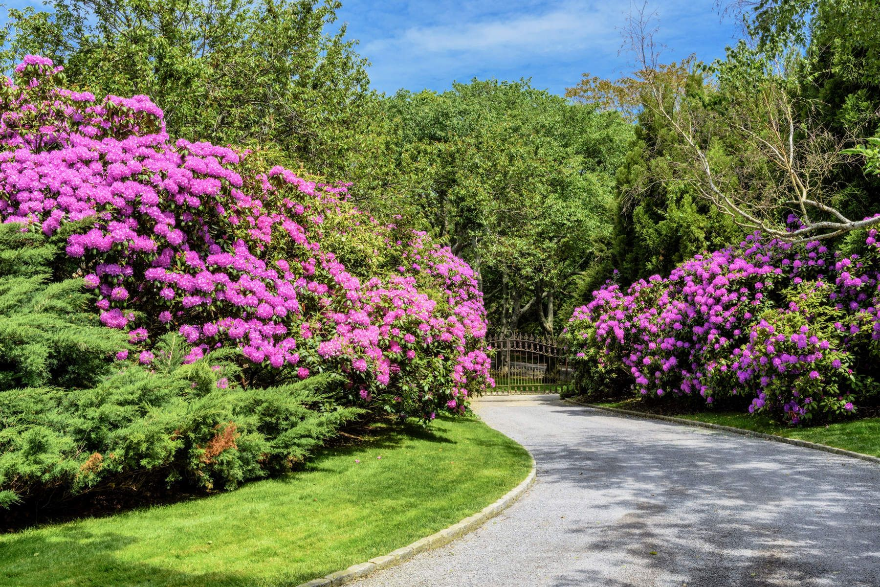 Additional photo for property listing at EAST HAMPTON FURTHER LANE ESTATE AREA 189 Further Lane East Hampton, New York 11937 United States