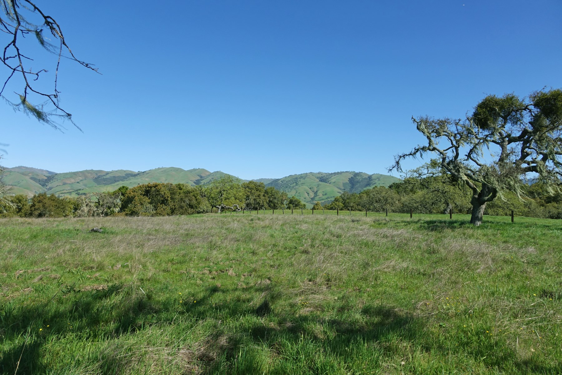Terrain pour l Vente à 160 Acres with Meadows and Oak Woodlands 33734 Old Country Road Carmel Valley, Californie 93924 États-Unis