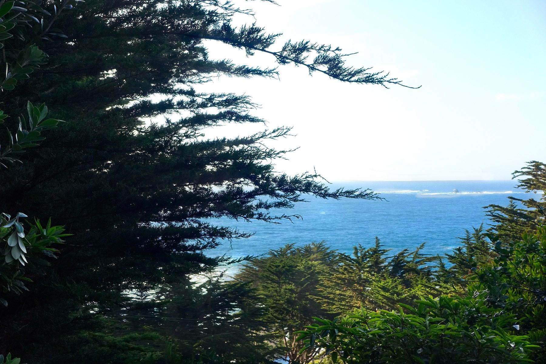 단독 가정 주택 용 매매 에 Ocean View Treetop Aerie 164 Spindrift Road #A Carmel Highlands, 캘리포니아, 93923 미국
